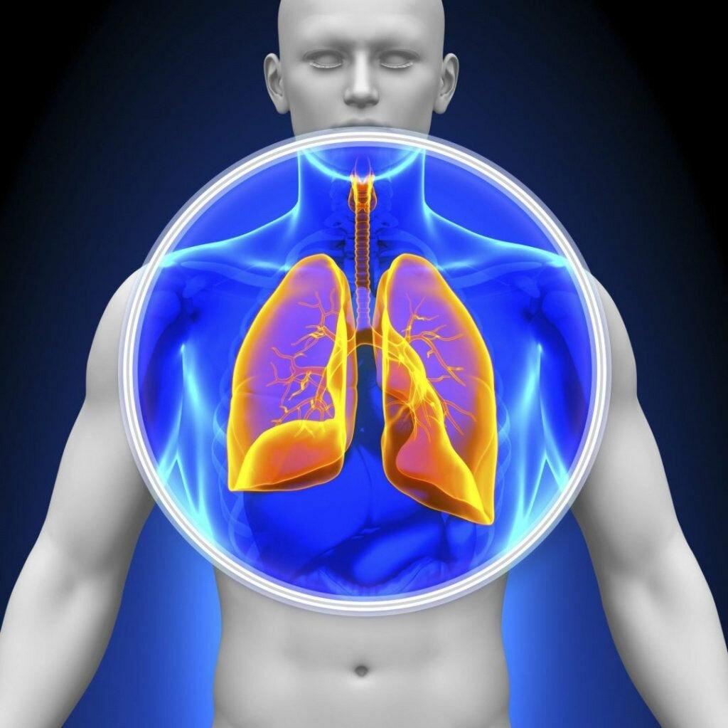 Профилактика пневмонии: 6 полезных советов