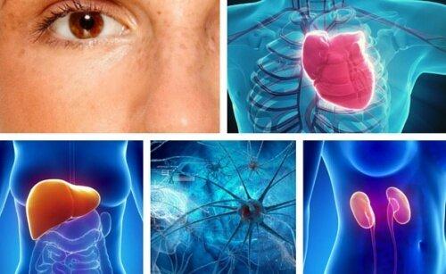 10 участков тела, наиболее подверженных стрессу