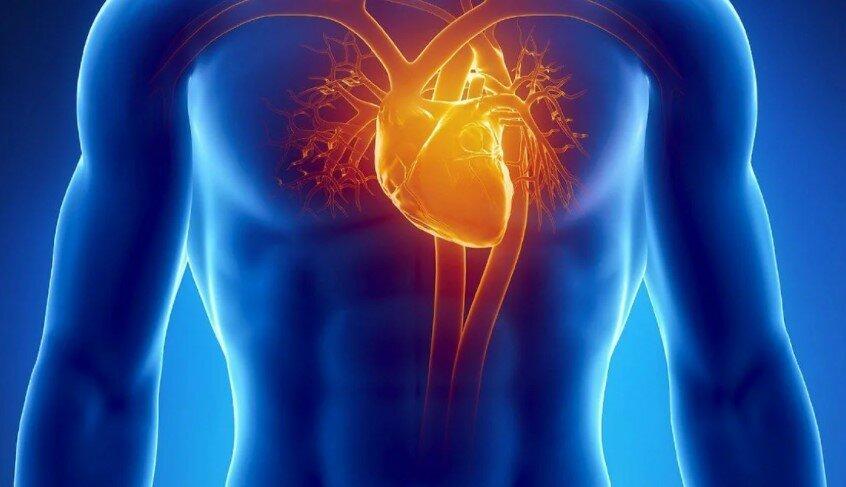 Идеальная суббота: укрепление сердечно-сосудистой системы